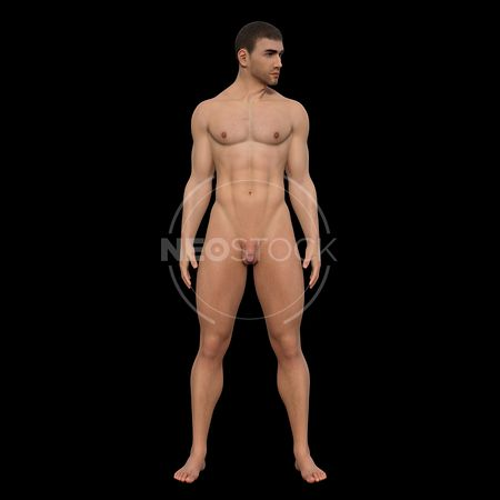 cg-body-pack-male-art-nude-neostock-23