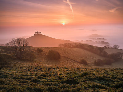 Misty sunrise over the distinctive pine topped Colmer's Hill near Bridport, Dorset, UK