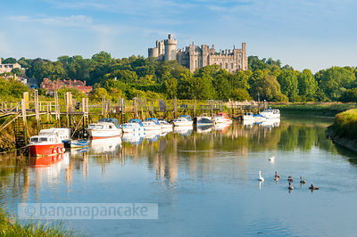 Arundel Castle from the River Arun - BP2526B
