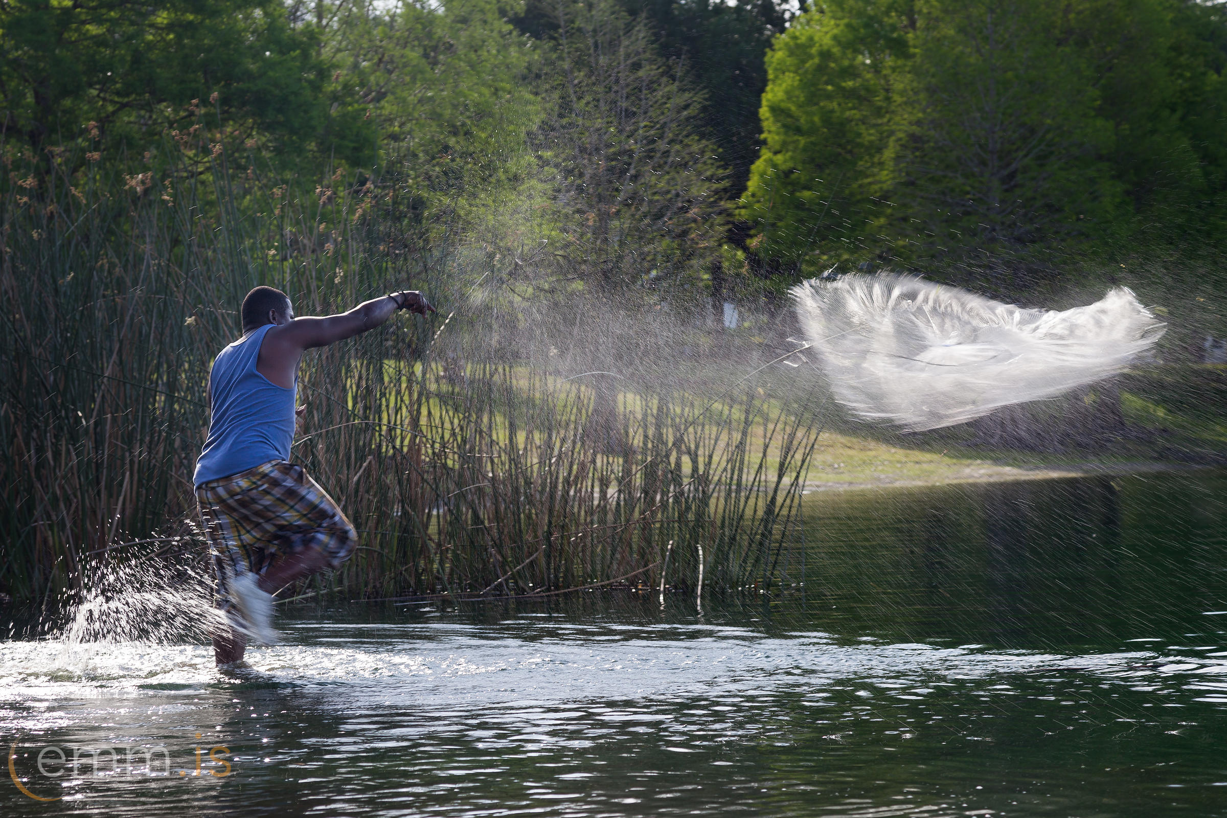 Man_catching_a_fish_by_net_in_Florida_emm.is-9