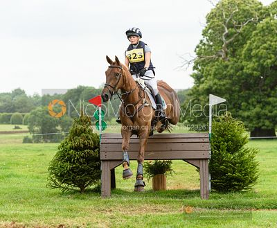 Julia Norman and METALBRIDGE HARRY - Upton House Horse Trials 2019.