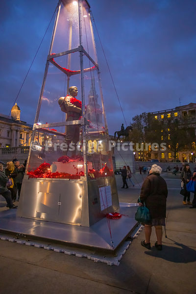 Old lady looking at World War 1 art installation in Trafalgar Square