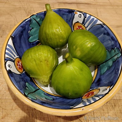 180910 Jenner Figs, ripe figs from tree that Annie gave me for my 60th but that needed moving to her house, September 10 2018.