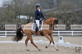 Unaffiliated dressage. Brook Farm Training Centre. Essex. UK. 16/02/2019. ~ MANDATORY Credit Garry Bowden/Sportinpictures - N...