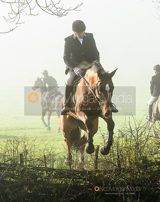 Willie Reardon jumping a hedge at Withcote - The Cottesmore Hunt at Withcote 30/11