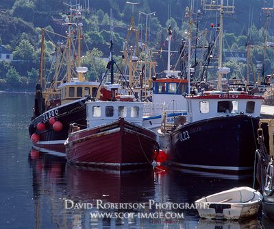 Image - Fishing boats in Ullapool harbour, Scotland