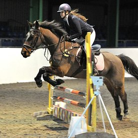 27/01/2019 - Unaffiliated showjumping - Brook Farm TC