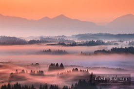Misty mood in alpine upland - Europe, Germany, Bavaria, Upper Bavaria, Garmisch-Partenkirchen, Saulgrub, Bayersoien, Schönber...