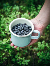 Blueberries by Moen