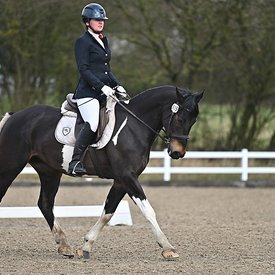 14/03/2020 - Class 3 - Unaffiliated dressage - Brook Farm training centre - UK