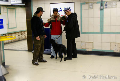 071129_DogDrugCheck_043 Police drug check with sniffer dogs checking passengers at Mile End Underground station, London. Dece...