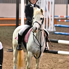 05/01/2020 - Class 1 - Unaffiliated showjumping - Brook Farm training centre