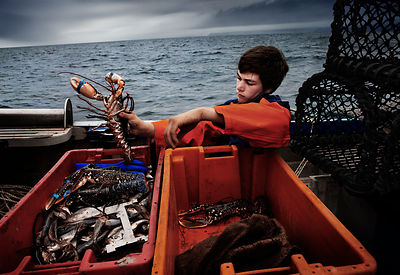 Crab fisherman, Port Isaac, Cornwall.