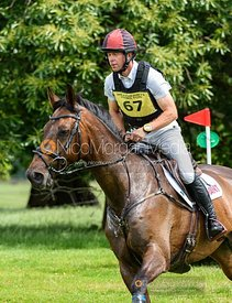 Kevin McNab (AUS) and SCUDERIA 1918 A BEST FRIEND - Upton House Horse Trials 2019.