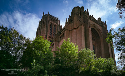 Liverpool Cathedral Branches Out