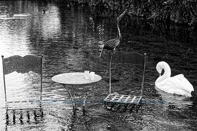 Table, chairs and birds in the Sorgue river (original decoration of the town of L'Isle-sur-la-Sorgue)
