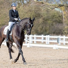 10/02/2019 - British Dressage - Brook Farm training centre