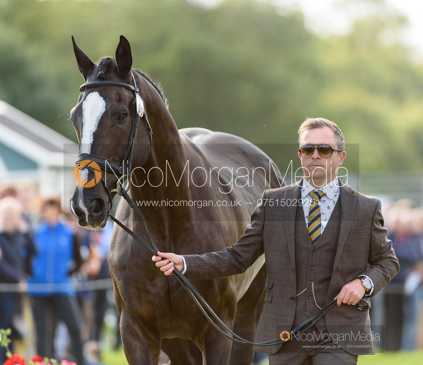 Ben Hobday and HARELAW WIZARD at the trot up, Land Rover Burghley Horse Trials 2019