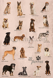 Dog breeds poster in Spanish