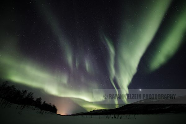 Veils of northern lights and Venus in Lapland