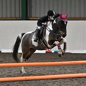 15/03/2020 - Class 3 - Unaffiliated showjumping - Brook Farm training centre - UK