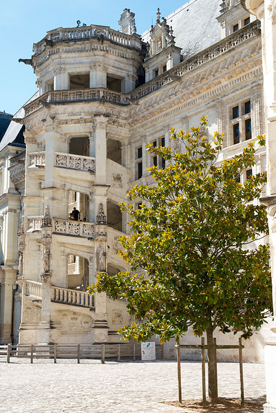 Chateau-Royal-de-Blois_Mir-Photo-ADT41_(10)