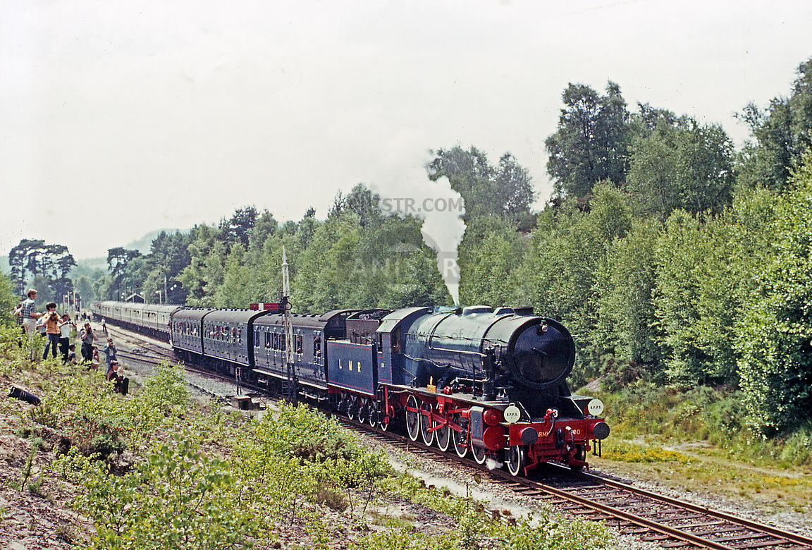Steam loco WD600 Liss Forest