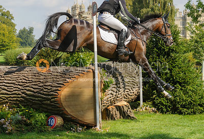Oliver Townend and SAMUEL THOMAS II, cross country phase, Land Rover Burghley Horse Trials 2017