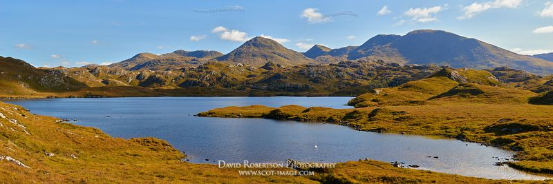 Prints & Stock Image - View of the Rois Bheinn group in Moidart, viewed from Loch Doir a Ghearrain, Ardnish, Arisaig, Lochabe...