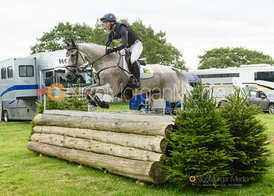 Oliver Townend and BALLAGHMOR CLASS - Upton House Horse Trials 2019.