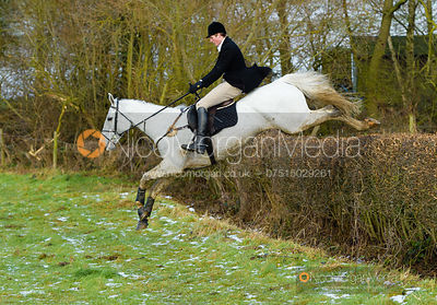 Joe Hill jumping a hedge at Walton Thorns