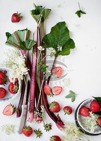 Rhubarb Strawberry by weber