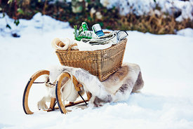 Picnic in the snow 2 by Krueger