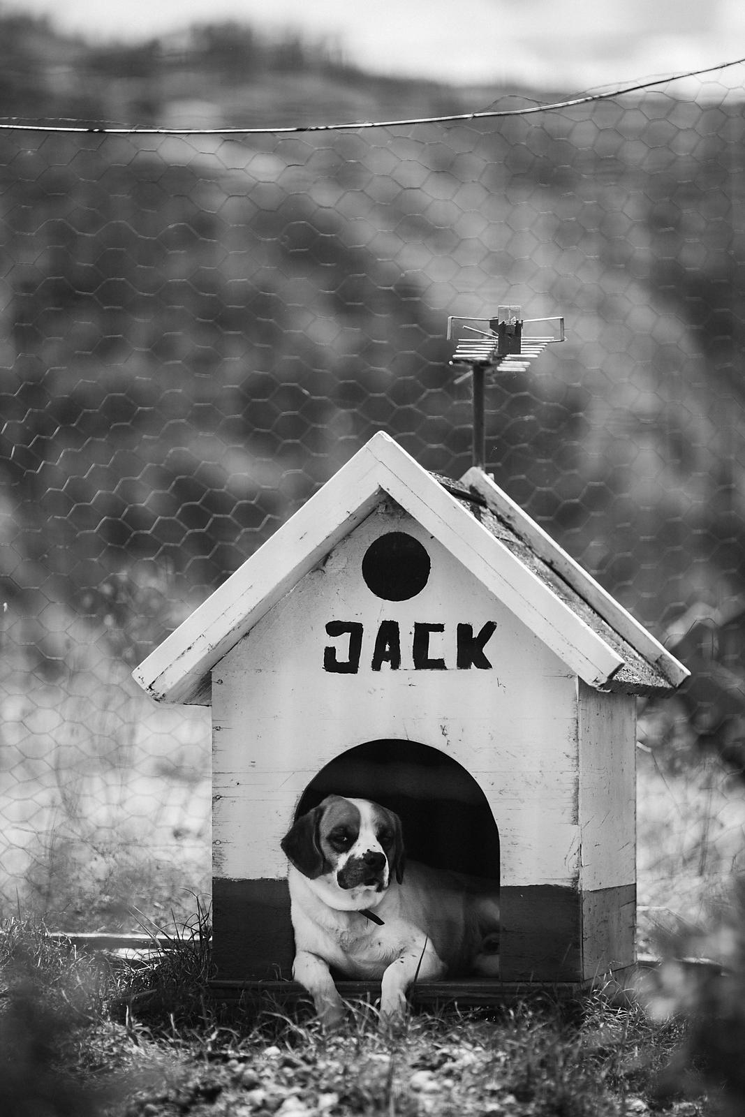 Jack et la méganiche // Jack and the Cuckoo-clock house