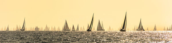 Panoramic start to the Round the Island race
