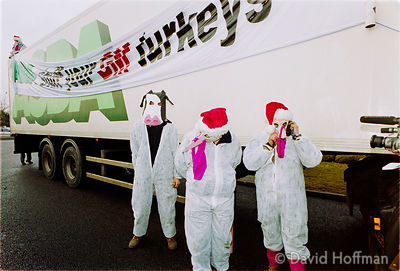 00121902-36 Protesters from the Snowball & the GenetiX anti GM food movement chain themselves to delivery trucks during a blo...