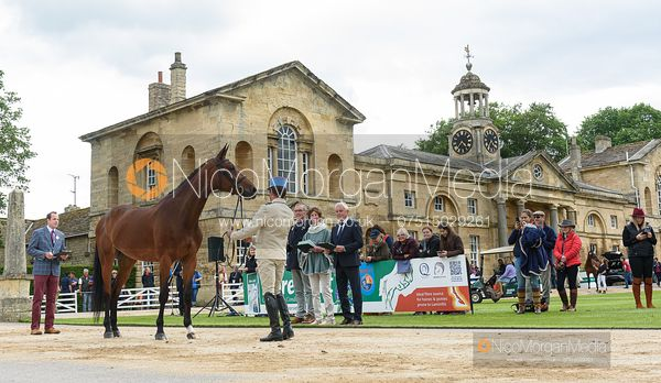 Didier Willefert Adc and TESS HEUTIERE MILI at the trot up, Equitrek Bramham Horse Trials 2019