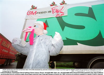 Asda Turkeys 7 Protesters against GM foods from the Snowball & the GenetiX anti GM food movement chain themselves to delivery...