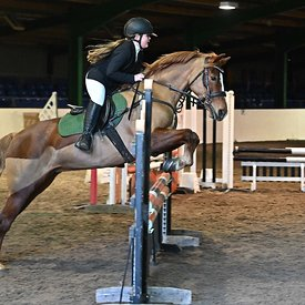 19/01/2020 - Class 8 - Unaffiliated showjumping - Brook Farm training centre