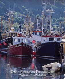 Image - Fishing boats at Ullapool, Scotland