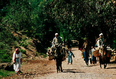Men returning from market, Essouaria, Morocco. 1991