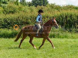 40cm - Cottesmore Pony Club Junior Show