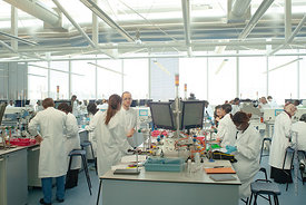 #027914  The Super Lab in the Science Centre, London Metropolitan University, where 280 students can each work independently