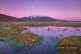 Mountain lake Sparks Lake and Mount Bachelor with moon - North America, USA, Oregon, Deschutes, Cascade Lakes, Sparks Lake, s...