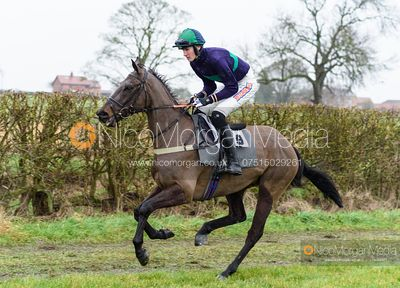 Jack Andrews and MINELLA WIZARD - Race 6 - Open Maiden - The Midlands Area Club at Thorpe Lodge 26/1