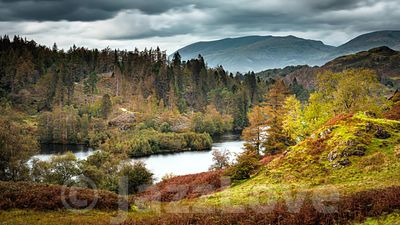 Tarn Hows in autumn.4K time-lapse video clip.