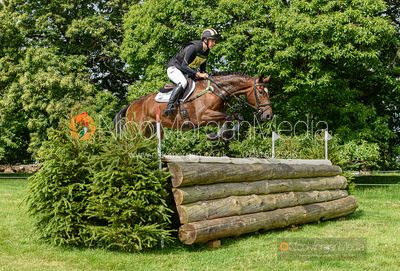 Tom Rowland and QUINTILIUS - Upton House Horse Trials 2019.