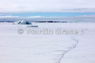 Frozen Weddell Sea with stranded iceberg off Snow Hill Island, Antarctic Peninsula,  Antarctica