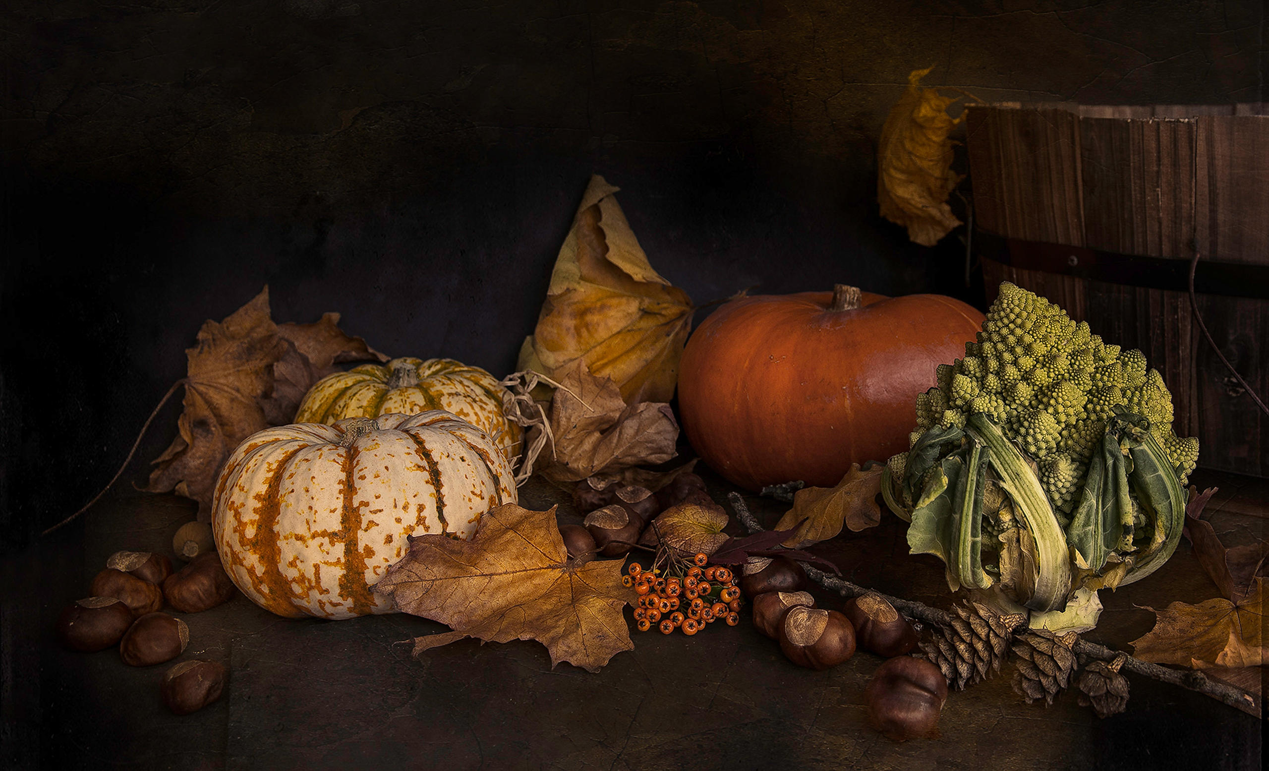 Autumnal_Still_Life