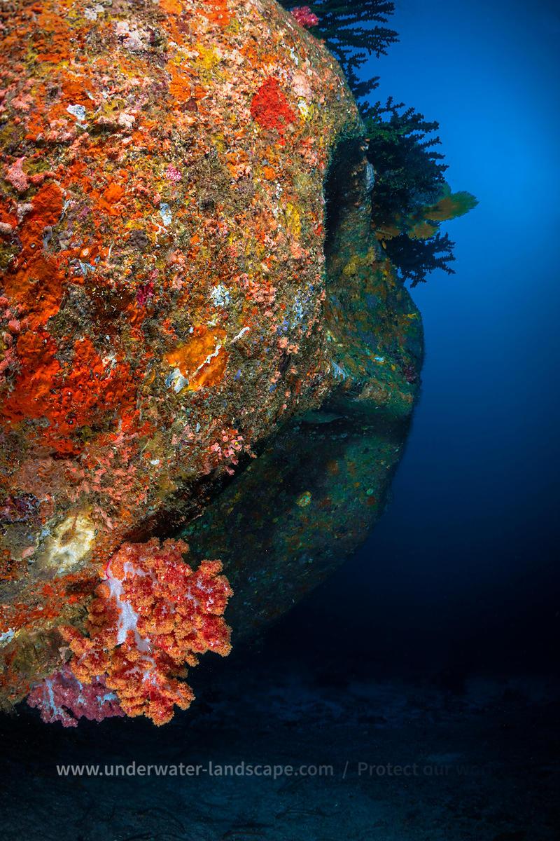 Underwater Photography Underwater Rock